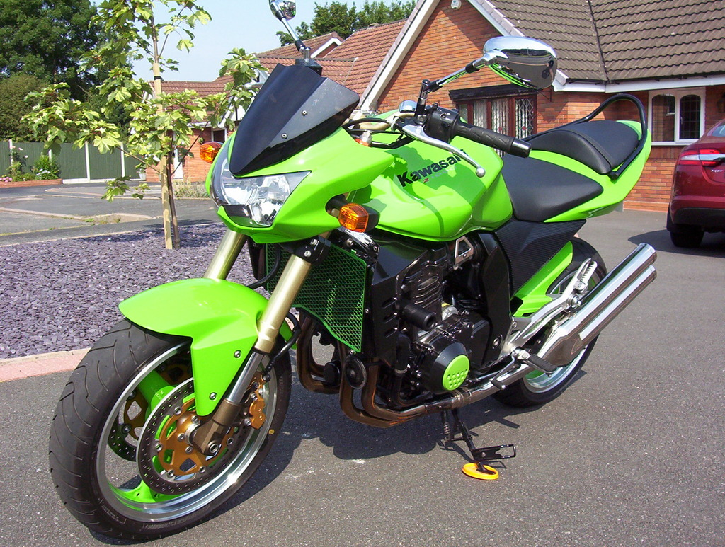 Meet 'Shrek' (Z1000) 102_0453_zpsezwjb3ds