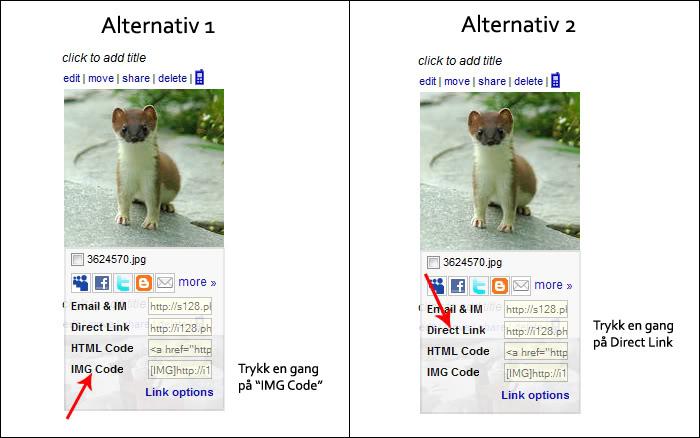 Hvordan laste opp bilder via Photobucket Bilde5