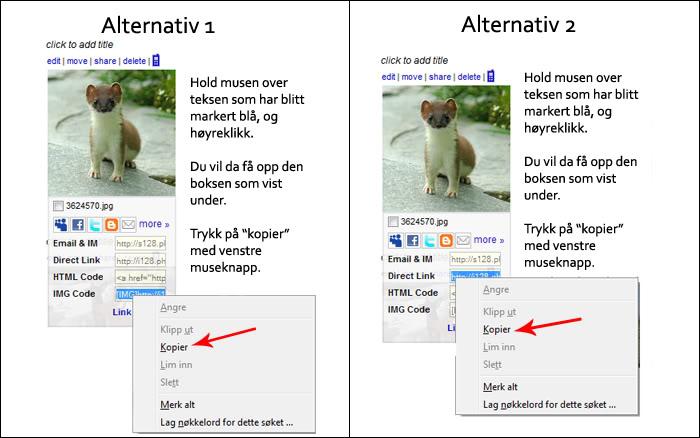 Hvordan laste opp bilder via Photobucket Bilde6