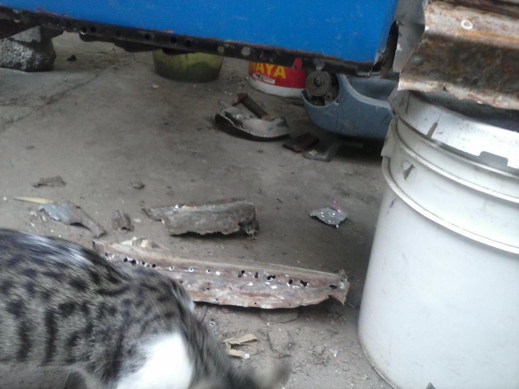 Les muestro mis avances con el interior y el piso de mi rata CAM00876_zps86cce47e