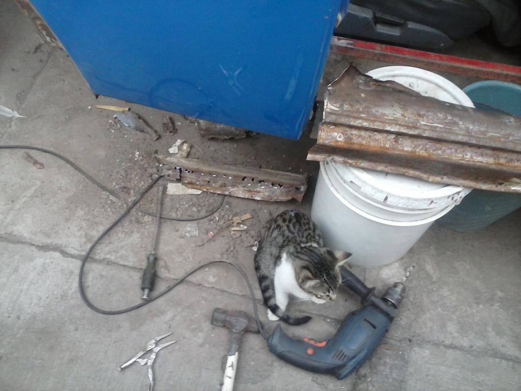 Les muestro mis avances con el interior y el piso de mi rata CAM00878_zps55955be3