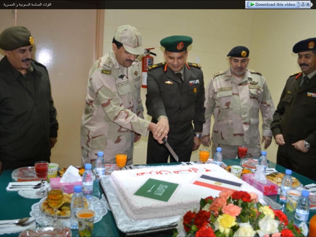 المناورات العسكرية المصرية-السعودية: من هو العدو المفترَض؟ - صفحة 2 4_zpsc46612e6