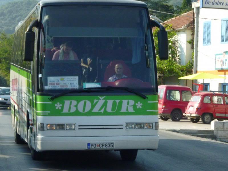 Božur, Podgorica P1030811_zpscc89322e