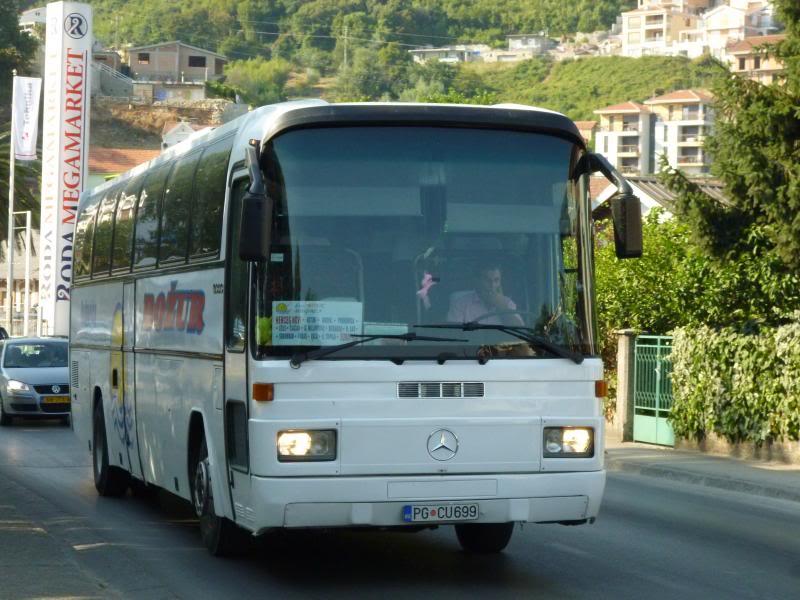 Božur, Podgorica P1030814_zps4b7388d5