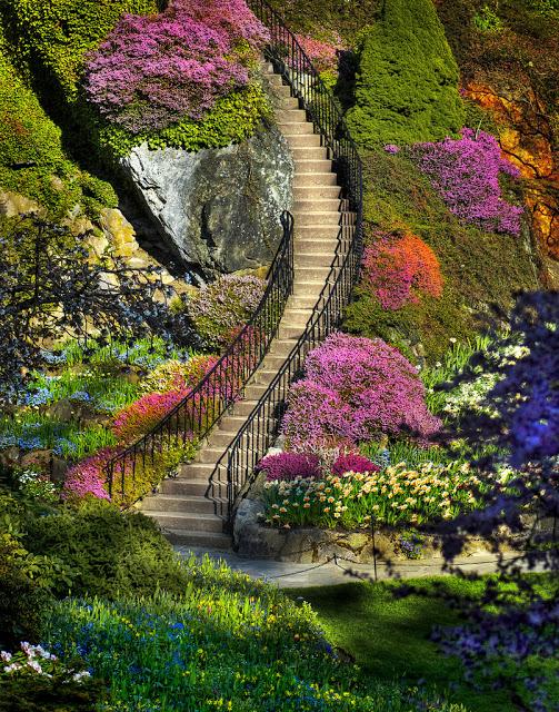 Japanski vrtovi - Page 3 ButchartGardens1_zpsa382017b