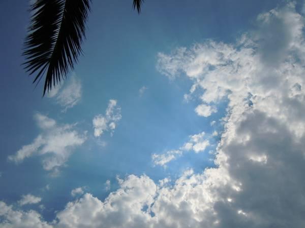 Nebo i oblaci - Page 3 L8u6dzla7xkxeskebum4_zps22c08ef7