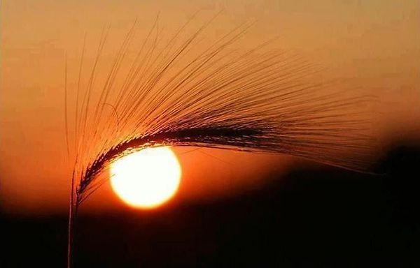 Sunce - Page 6 Abaa-The-Eye-Of-The-Sun_zpsa06cf305