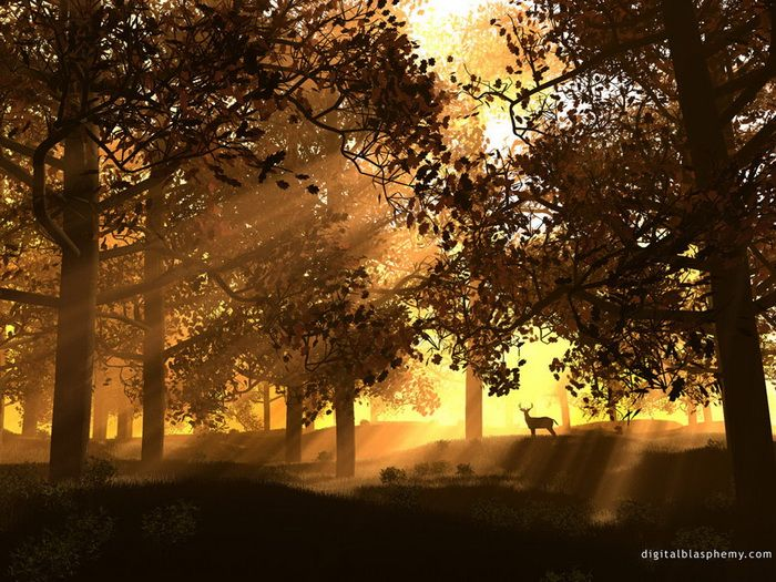 Sunce - Page 6 Awesome-sunshine-trees03_zpsc510ff82