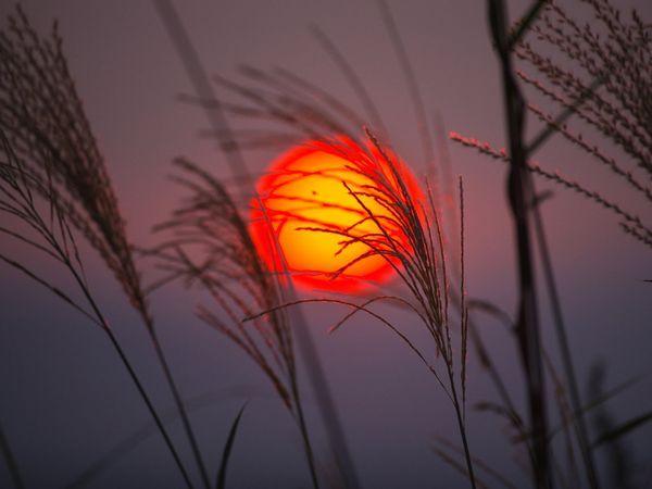 Sunce - Page 6 Orange-sunset-yamashita_1476_600x450_zpsc018b0ae