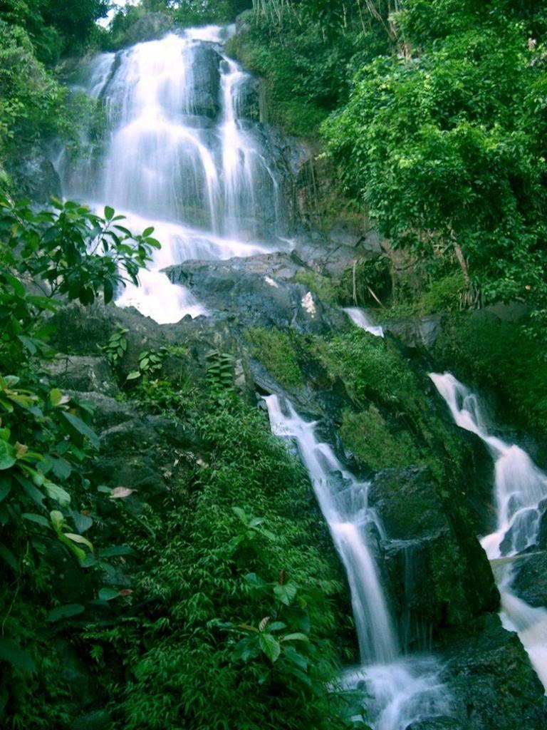 Vodopadi - Page 4 Fresh_Waterfalls_by_npcmachado_zps79c76646