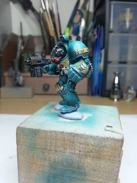 Warhammer lobo espacial 53_zps8e33b316