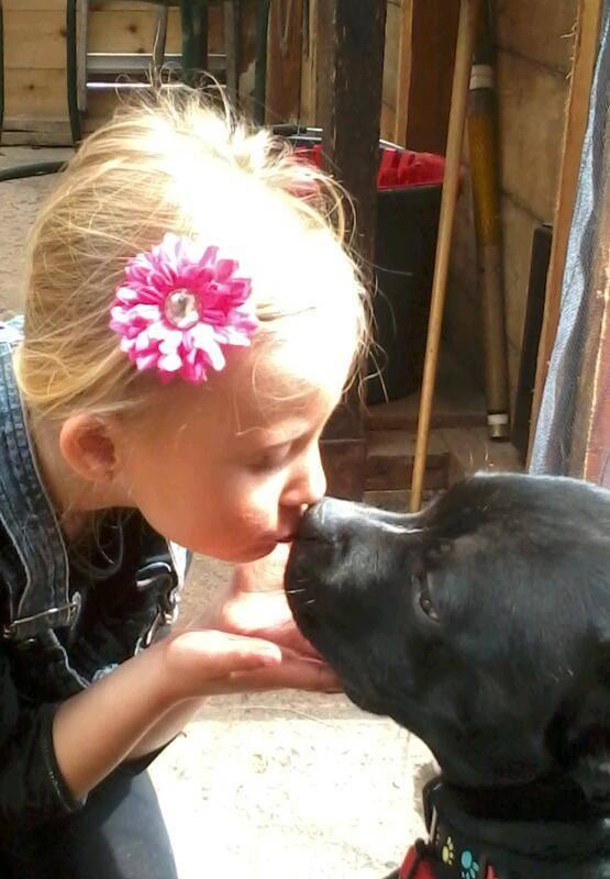 my dog vinnie 2014-05-05115734-1_zps8d7e55a3