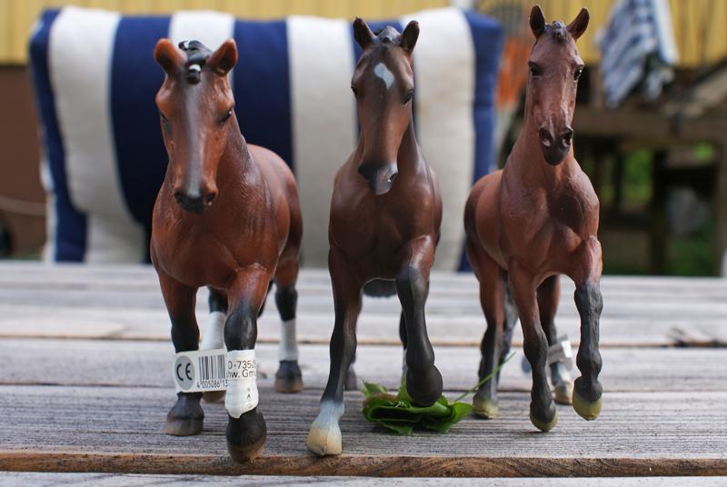 TSC's Bullyland horses (El Santo and Don Johnson) Special1_zps345e70c3