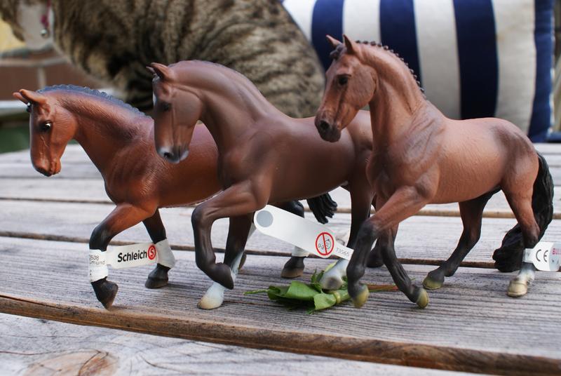 TSC's Bullyland horses (El Santo and Don Johnson) Special3_zps42a55119