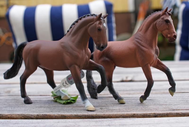 TSC's Bullyland horses (El Santo and Don Johnson) Special4_zps4f31afbd