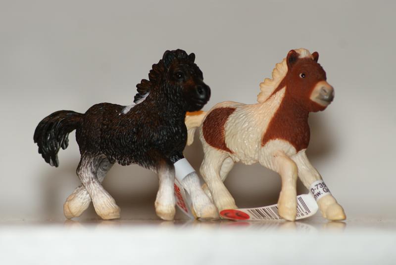 Horse additions (New: 9th December) ExlusiveShetlandfoal_zps74d2e2c5