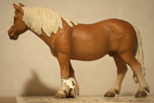 Horse additions (New: 9th December) Haflingervalack2_zps00dbd586