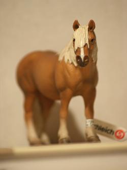 Horse additions (New: 9th December) Haflingervalack3kopia_zps59512941