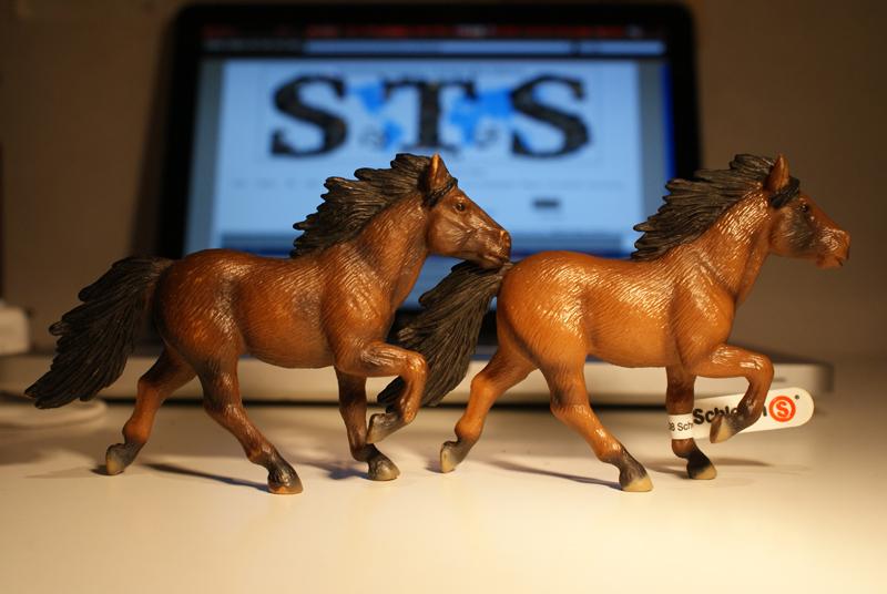 Horse additions (New: 9th December) Islandshastar1_zps205f0299