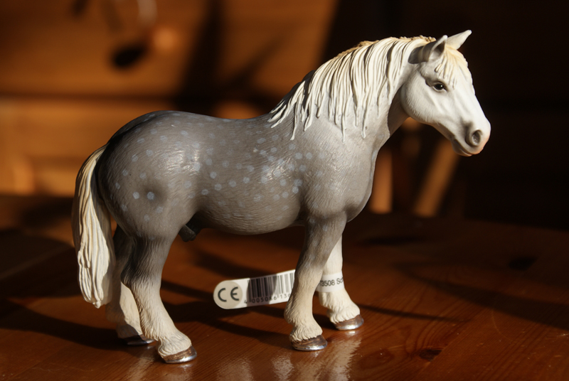 Horse additions (New: 9th December) Percheronnya_zps68ca6592