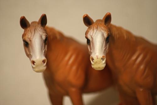 Horse additions (New: 9th December) Quarterhaumlst2_zps767d69b1