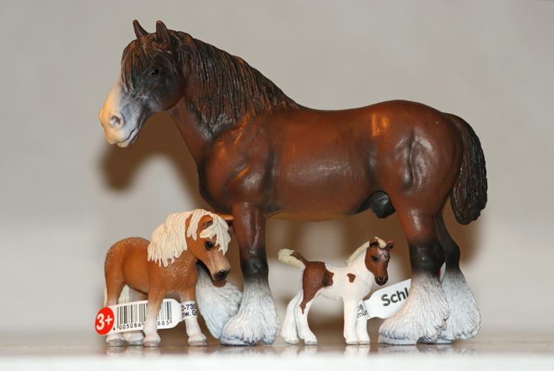 Horse additions (New: 9th December) Shireandfalabella_zpsdc338e85