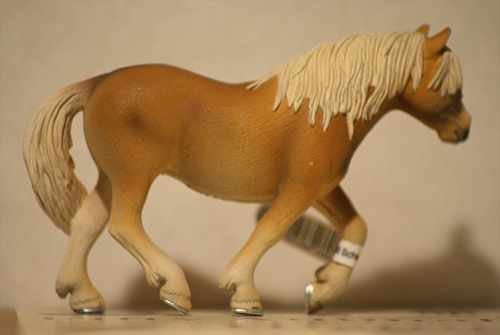 Horse additions (New: 9th December) Stoet_zpsd7370030