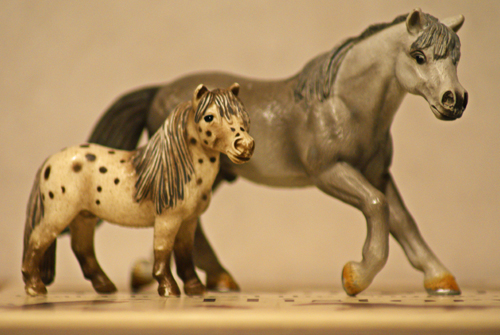 Horse additions (New: 9th December) Tvaponnyer_zps9ec6d897