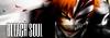 Bleach Soul [Elite] 100X35_zps7746a3ea