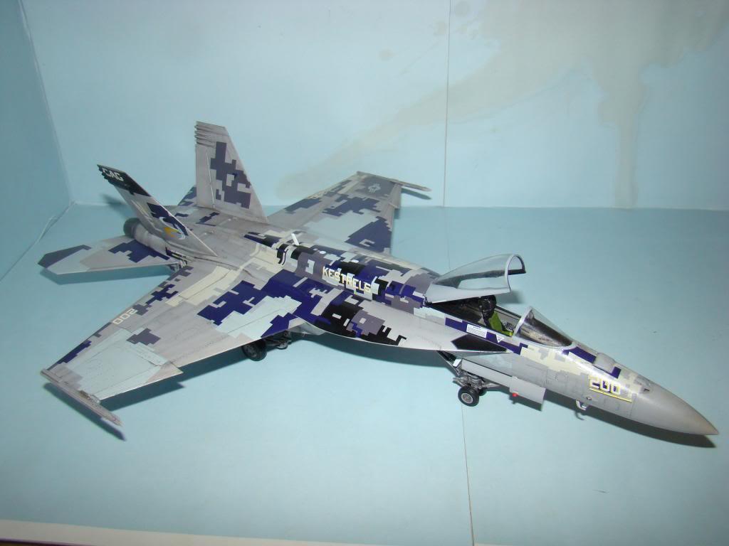 F-18E au 1/48 pixélisé - Page 2 DSC01289_zps365c12b6