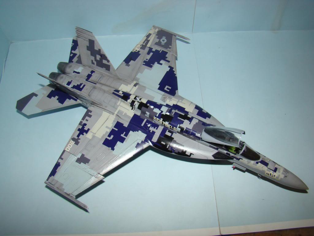 F-18E au 1/48 pixélisé - Page 2 DSC01290_zpsf5129e0c