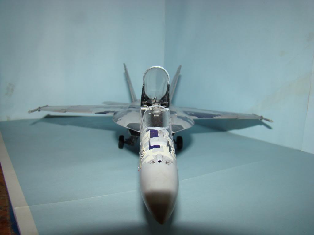 F-18E au 1/48 pixélisé - Page 2 DSC01291_zps314b066b