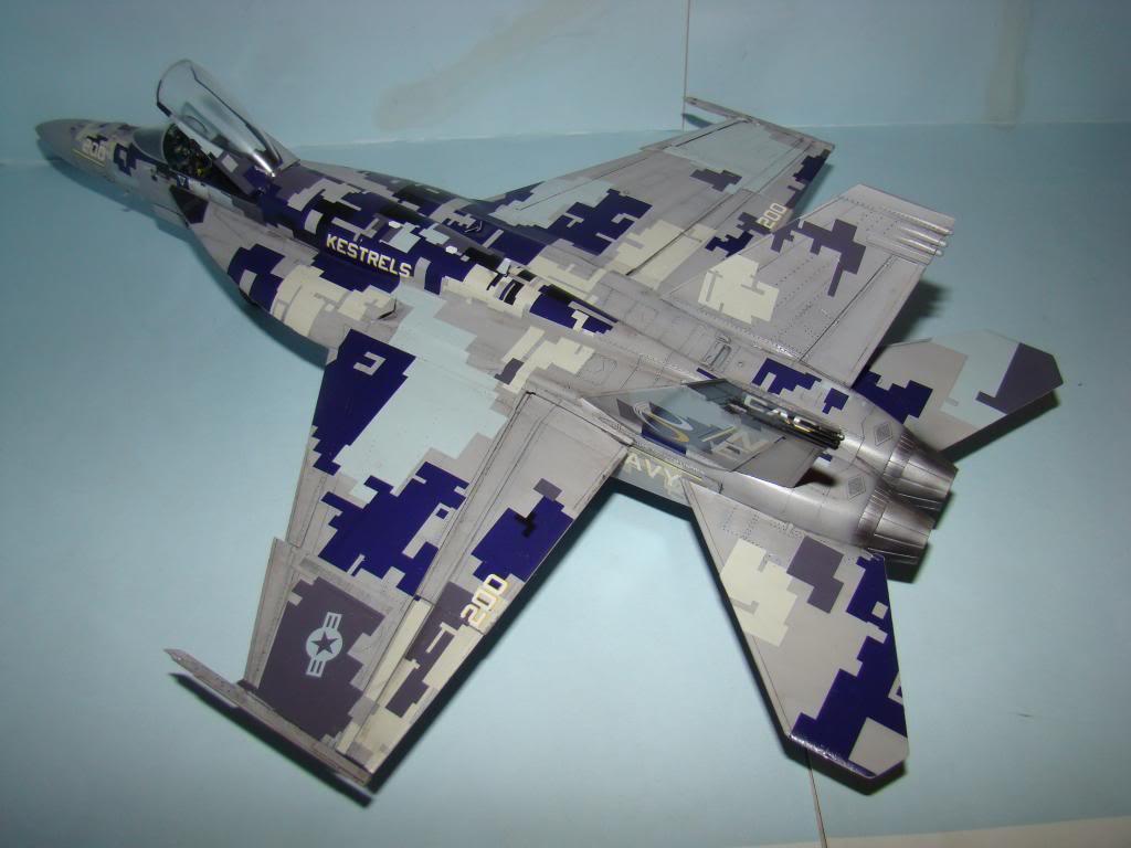 F-18E au 1/48 pixélisé - Page 2 DSC01292_zps84722276