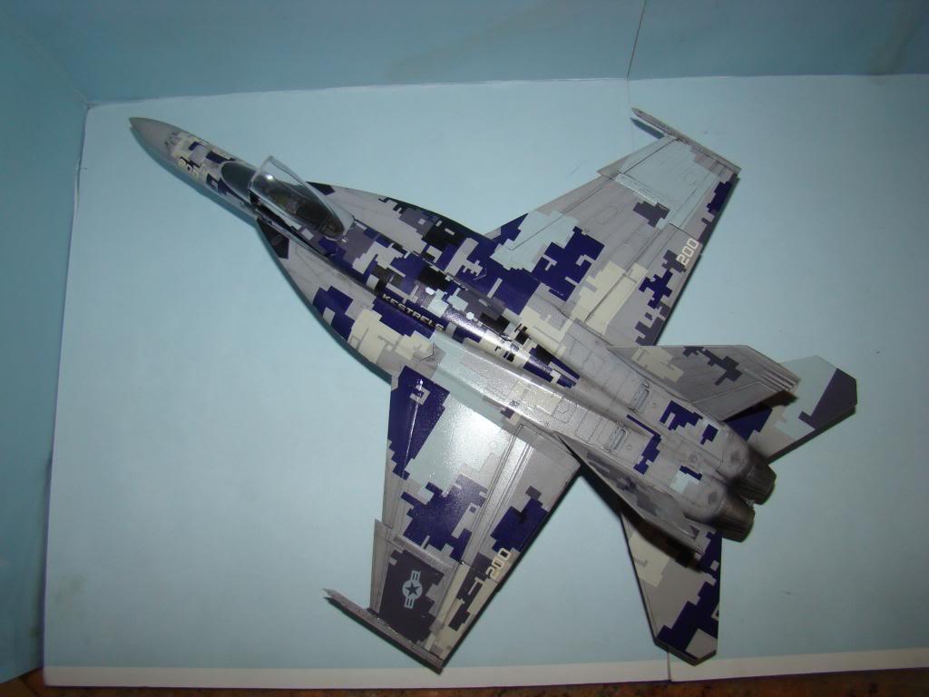 F-18E au 1/48 pixélisé - Page 2 DSC01293_zpsa56c61cd