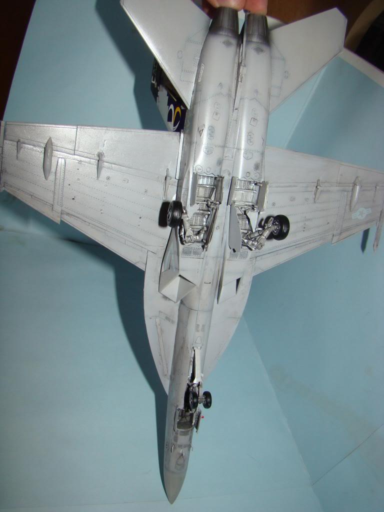 F-18E au 1/48 pixélisé - Page 2 DSC01294_zps7d41de9c