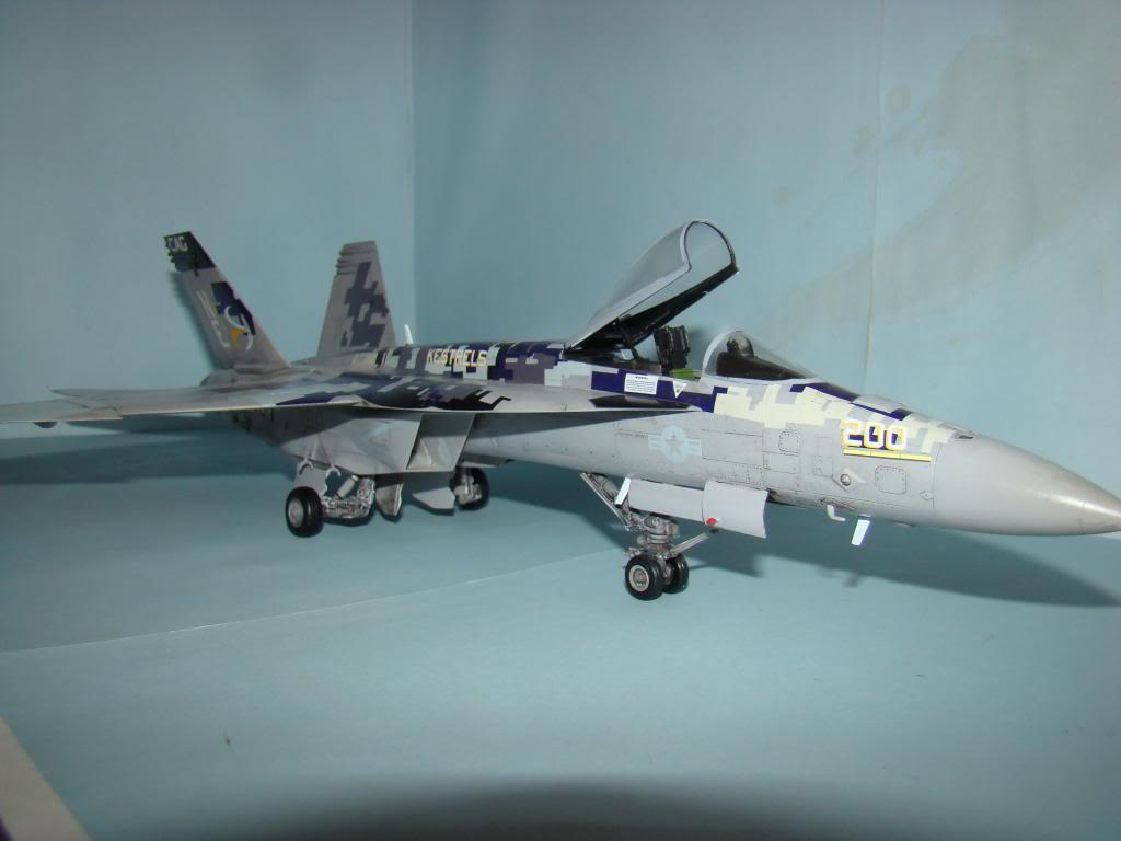 F-18E au 1/48 pixélisé - Page 2 DSC01295_zps684d97d6