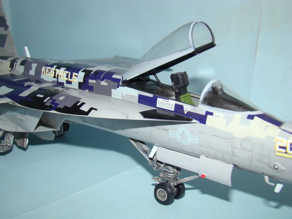 F-18E au 1/48 pixélisé - Page 2 DSC01296_zpsa5e79eab