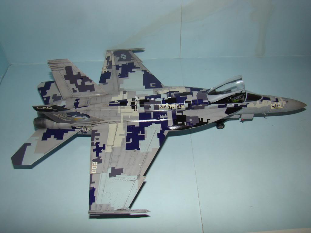 F-18E au 1/48 pixélisé - Page 2 DSC01298_zps7b3fd6f2