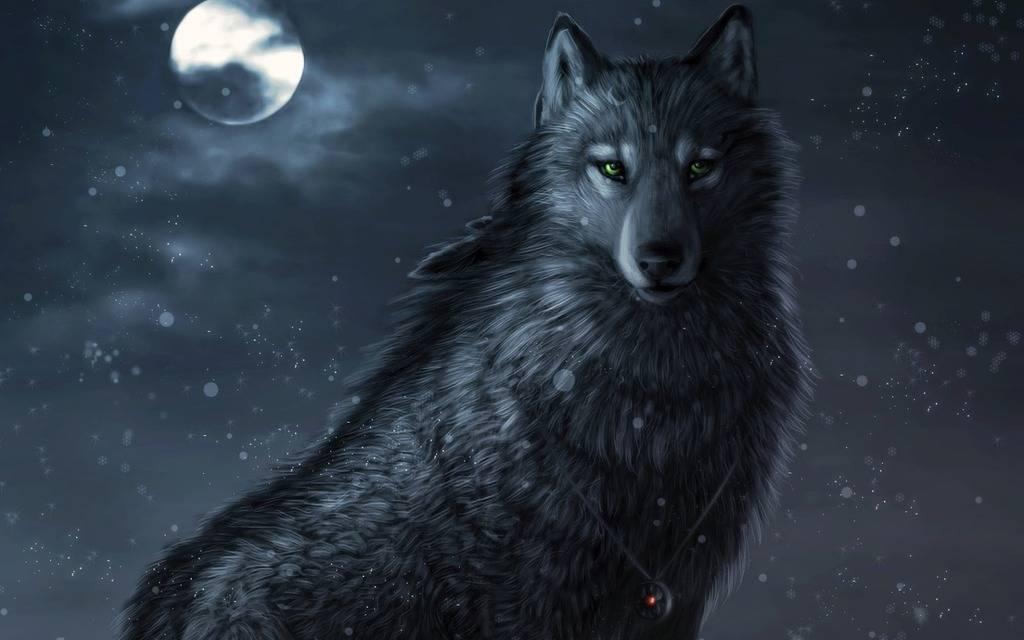 Alucard's House  3d%20wolf%20photos%20%2013_zpstjy7ebrp