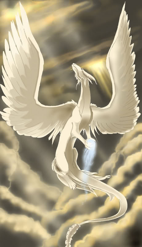 Dova's domain  Angel_Dragon_zps2wgplssw