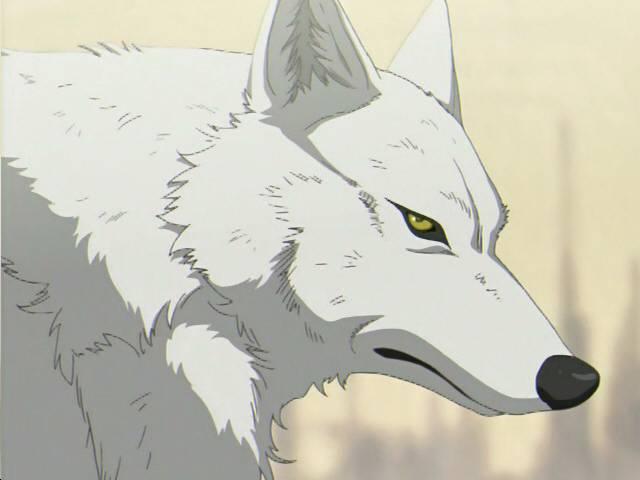 Alucard's House  Wolves-in-Anime-wolves-16961910-640-480_zps6kpk1ecw
