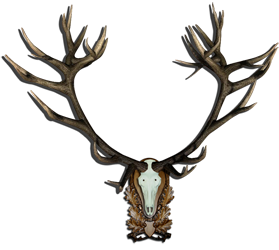 TOP 5 Red Deer // Ciervo Rojo MatiSig_zps75668d6f