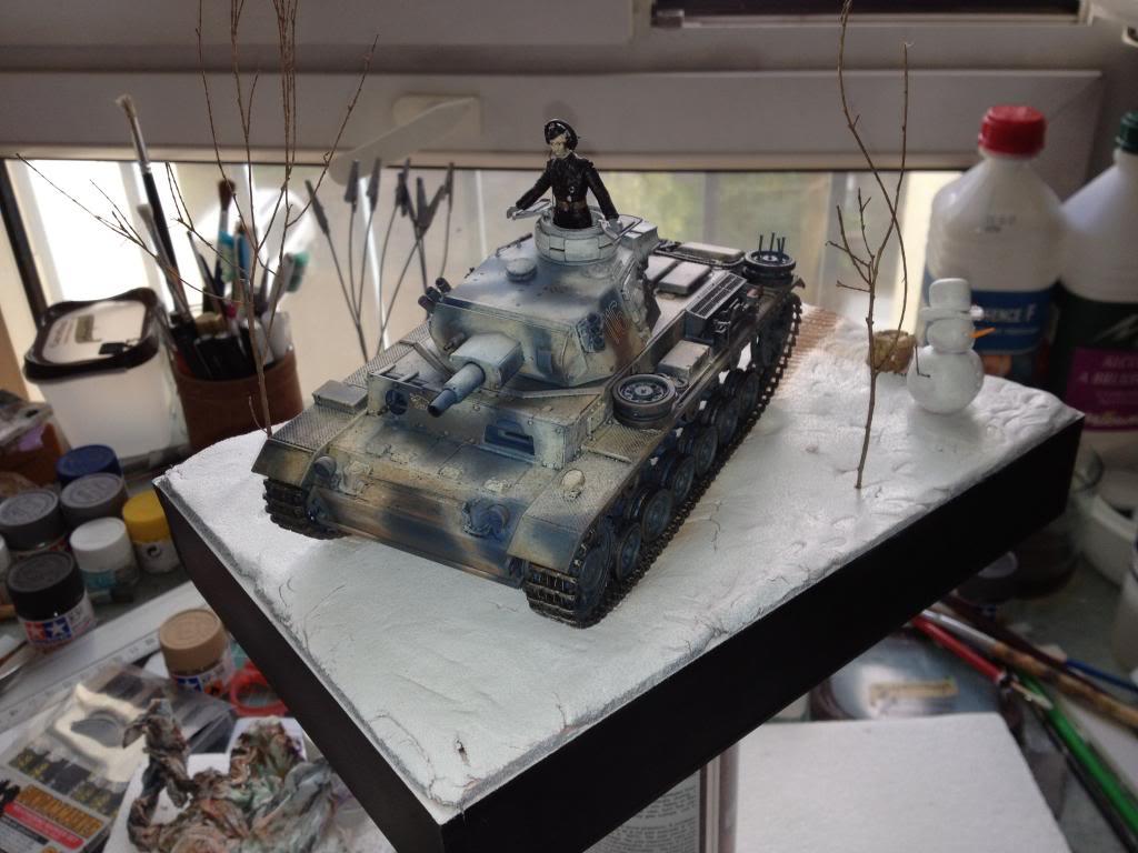 Panzerkampfwagen III ausf. N IMG_0467_zps5948a03f
