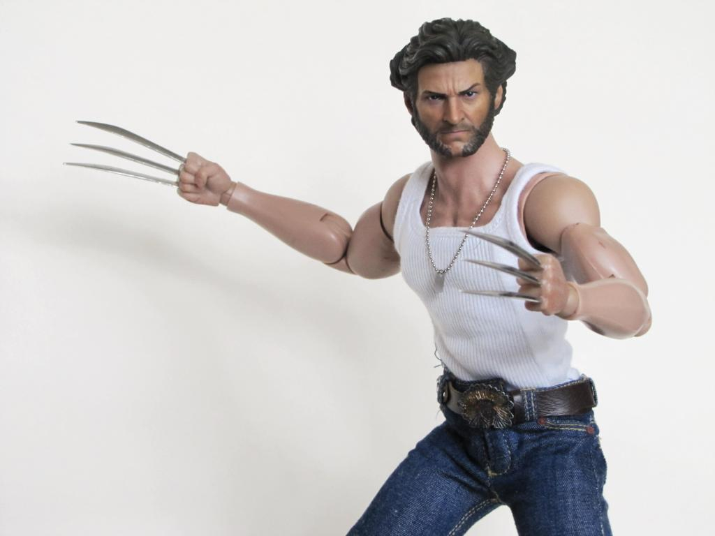 Wolverine (Hottoys) IMG_4559_zps56042231