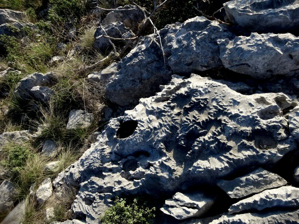 Dalmatinsko Proljeće 2014 DSC01470_zpsee5dccb5