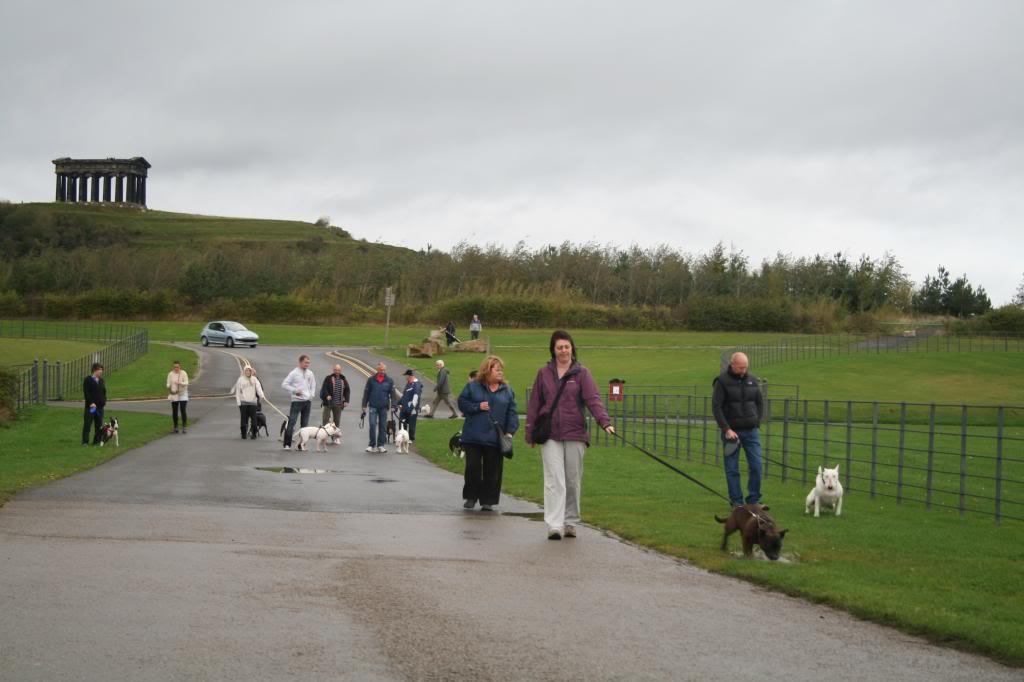 Bullie walks U.K. north east. IMG_5640_zpsf3e87178