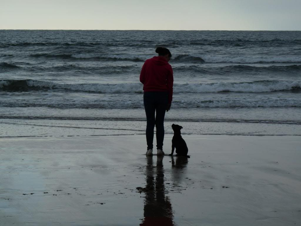 An evening on the beach. P1000394_zps2fa08c2a