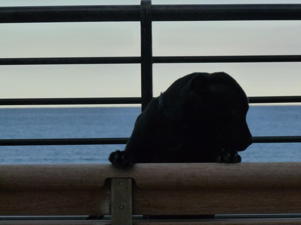 An evening on the beach. P1000425_zps73d1e2b0