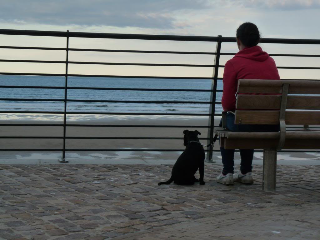 An evening on the beach. P1000438_zps5e117032
