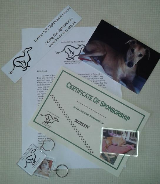 Sponsor a dog scheme 10497868_746653355399791_6315861188403454885_o_zps0448d5b4